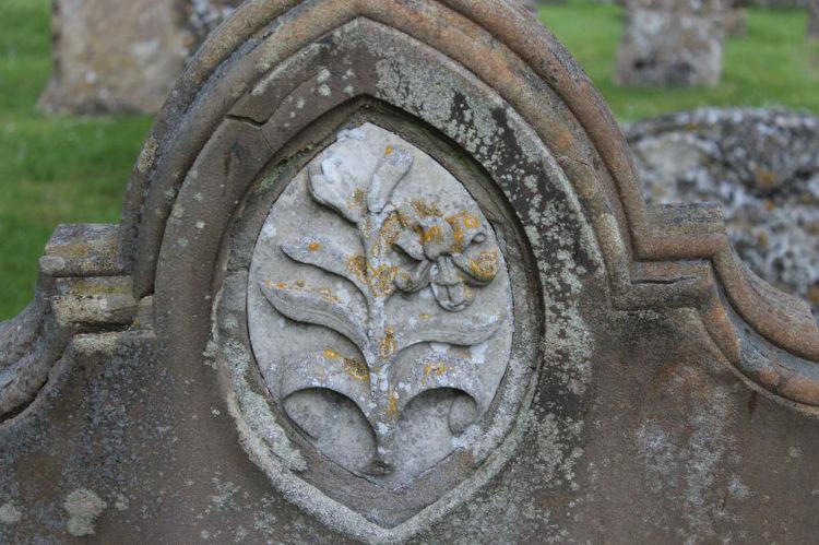 symbol lily
