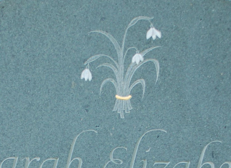 snowdrops on headstone