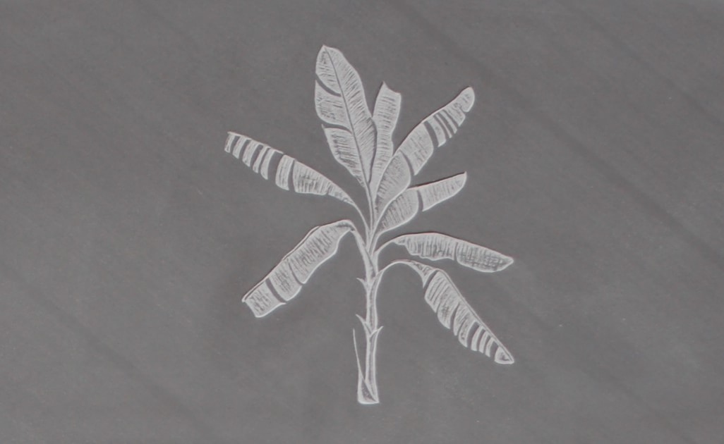 banana palm symbol